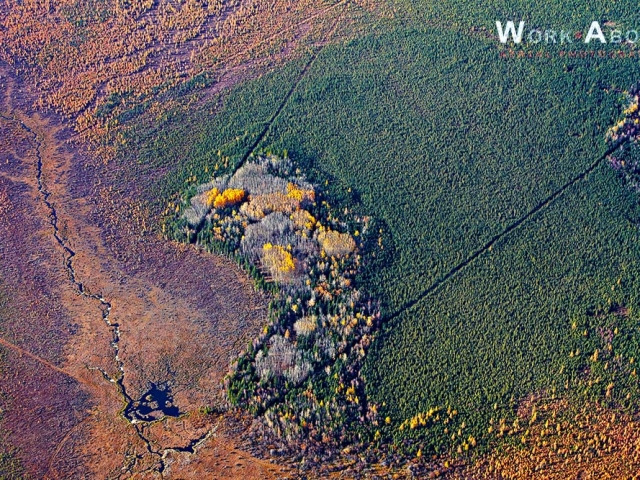 Aerial photo of fall scene north of Slave Lake, AB- 101002_0572