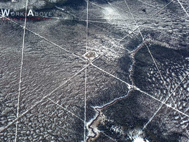 Aerial photo of seismic lines on snow